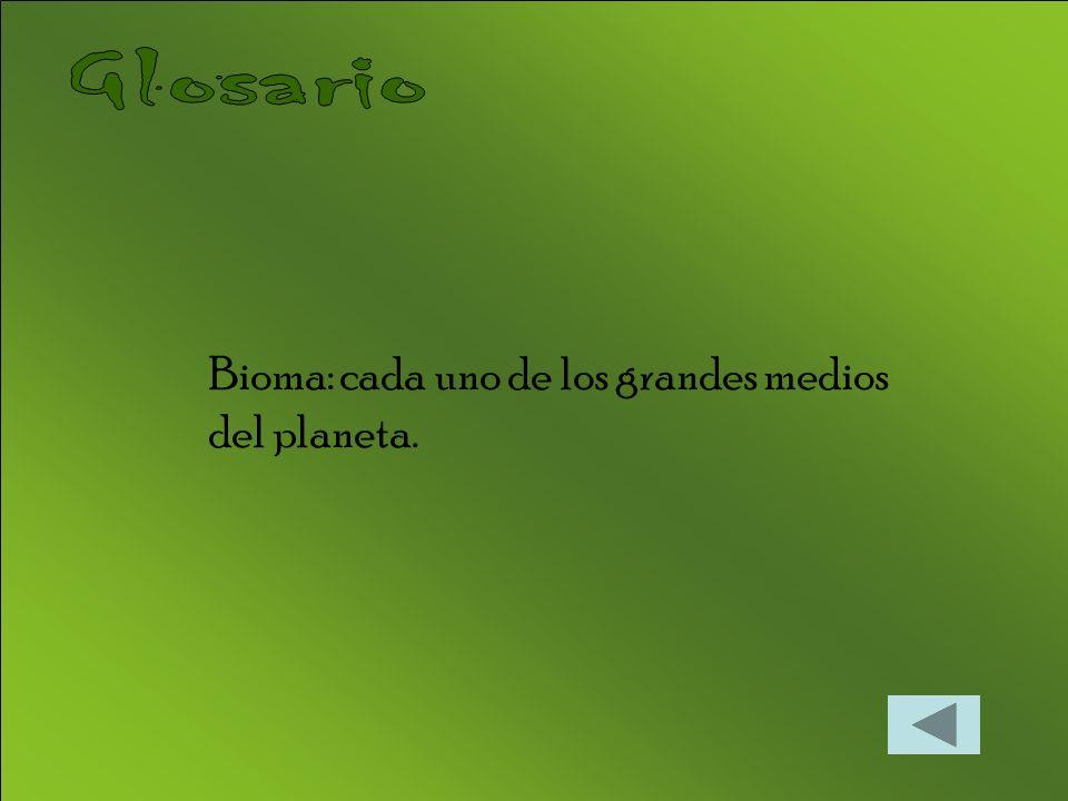 Bioma: cada uno de los grandes medios del planeta.