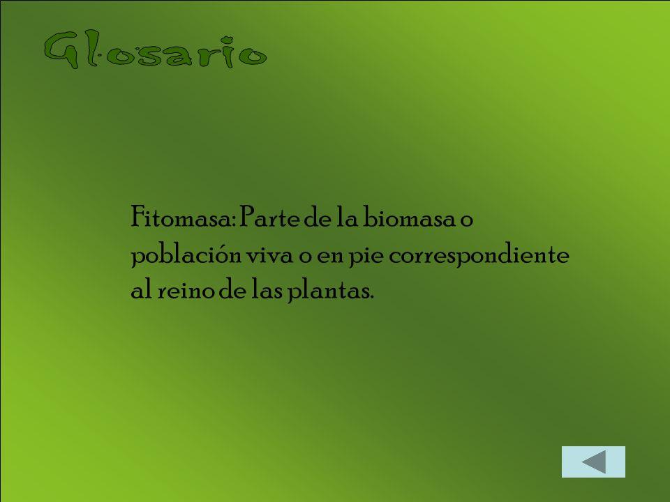 Fitomasa: Parte de la biomasa o población viva o en pie correspondiente al reino de las plantas.