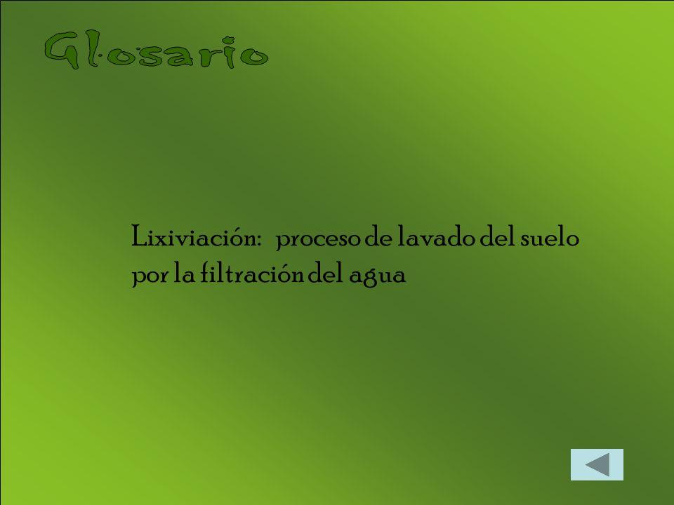 Lixiviación: proceso de lavado del suelo por la filtración del agua