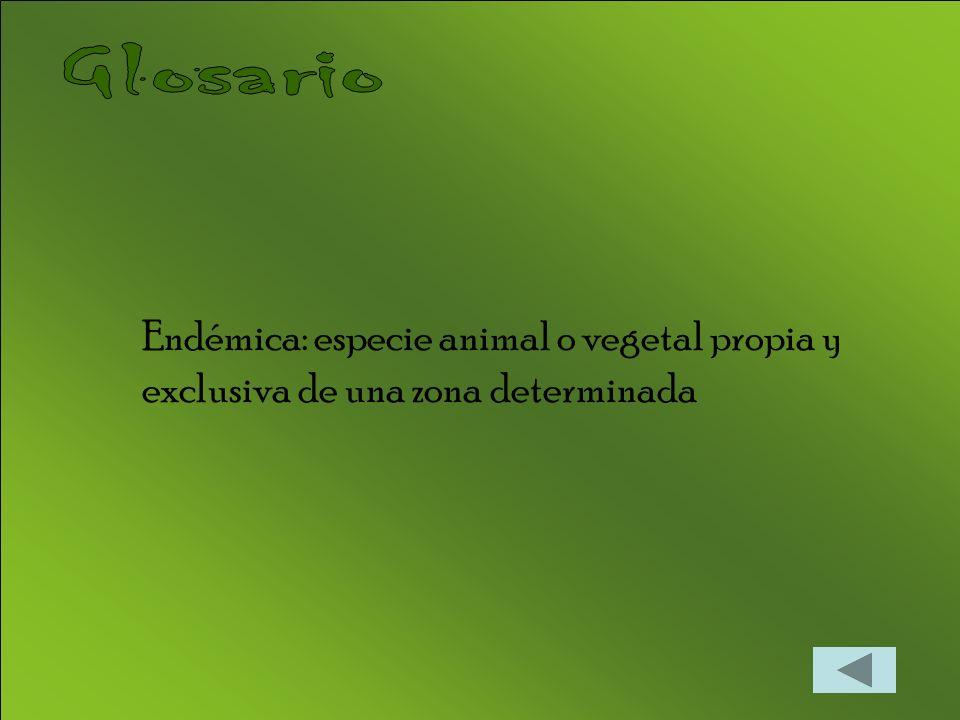 Endémica: especie animal o vegetal propia y exclusiva de una zona determinada