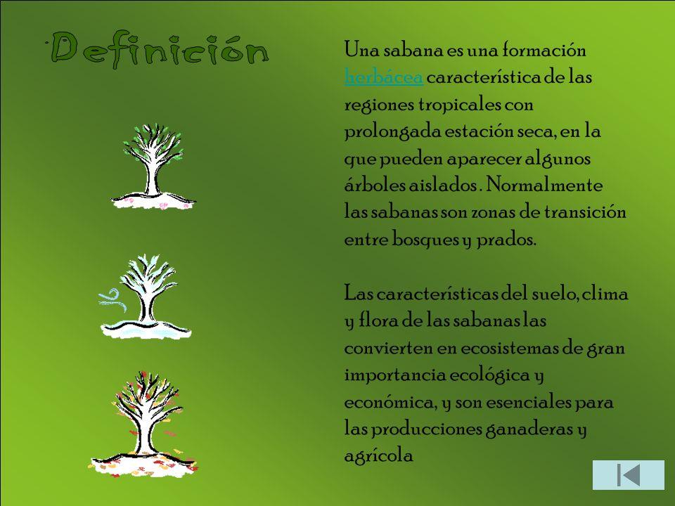 Las sabanas son biomas propios de los trópicos.
