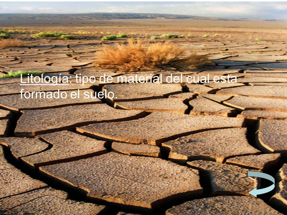 Litología: tipo de material del cual esta formado el suelo.