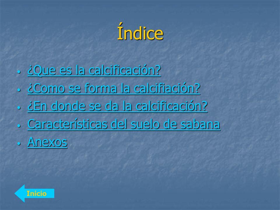 Índice Inicio ¿Que es la calcificación? ¿Que es la calcificación? ¿Que es la calcificación? ¿Que es la calcificación? ¿Como se forma la calcifiación?