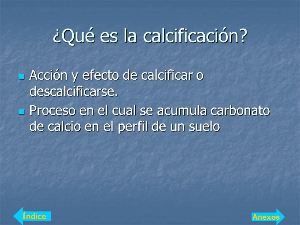 ¿Qué es la calcificación? Acción y efecto de calcificar o descalcificarse. Acción y efecto de calcificar o descalcificarse. Proceso en el cual se acum