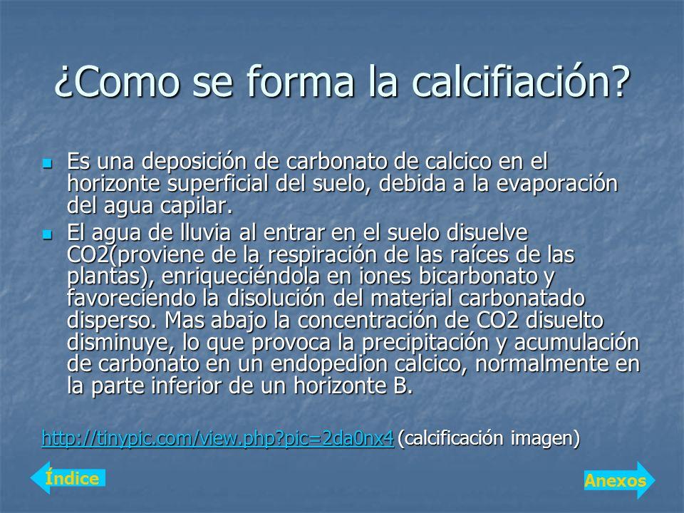 ¿Como se forma la calcifiación? Es una deposición de carbonato de calcico en el horizonte superficial del suelo, debida a la evaporación del agua capi