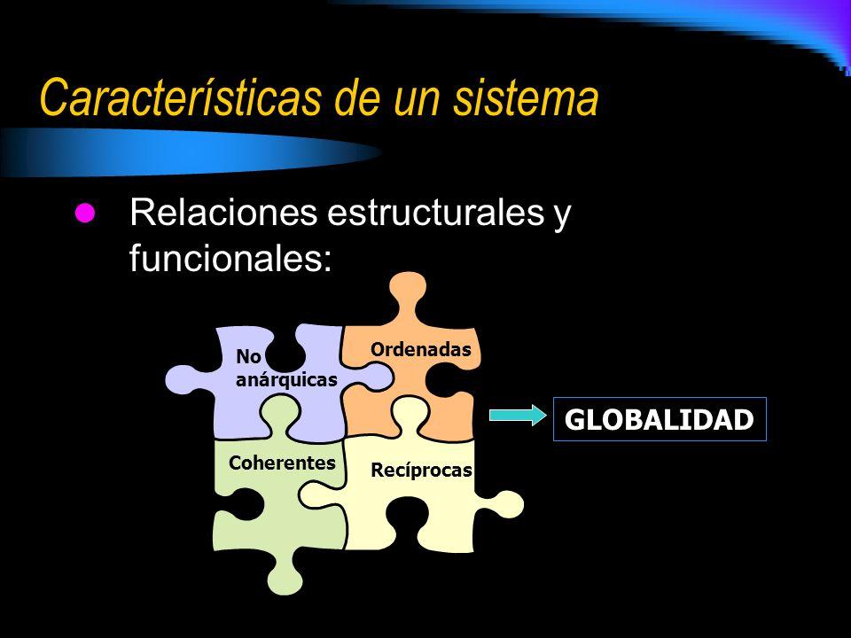 Características de un sistema Relaciones estructurales y funcionales: No anárquicas Ordenadas Coherentes Recíprocas GLOBALIDAD