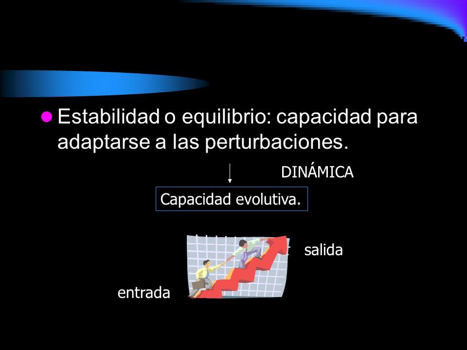 Estabilidad o equilibrio: capacidad para adaptarse a las perturbaciones. Capacidad evolutiva. entrada salida DINÁMICA