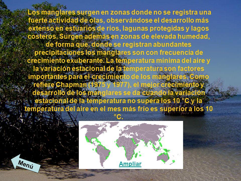 Los suelos de manglares se caracterizan por el alto contenido de agua y sal y de sulfuro de hidrógeno, el bajo contenido de oxígeno y la elevada proporción de humus (Macnae, 1968).