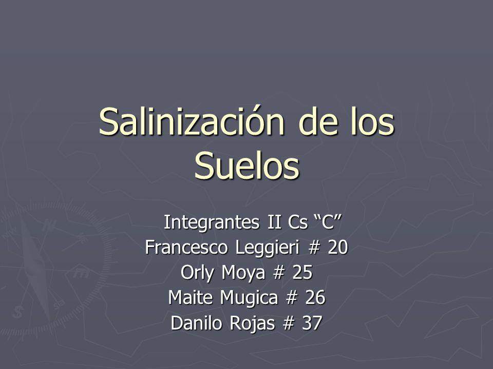 Salinización de los Suelos Integrantes II Cs C Integrantes II Cs C Francesco Leggieri # 20 Orly Moya # 25 Maite Mugica # 26 Danilo Rojas # 37