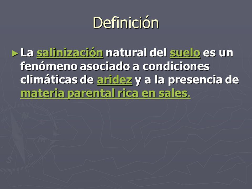 Definición La salinización natural del suelo es un fenómeno asociado a condiciones climáticas de aridez y a la presencia de materia parental rica en s