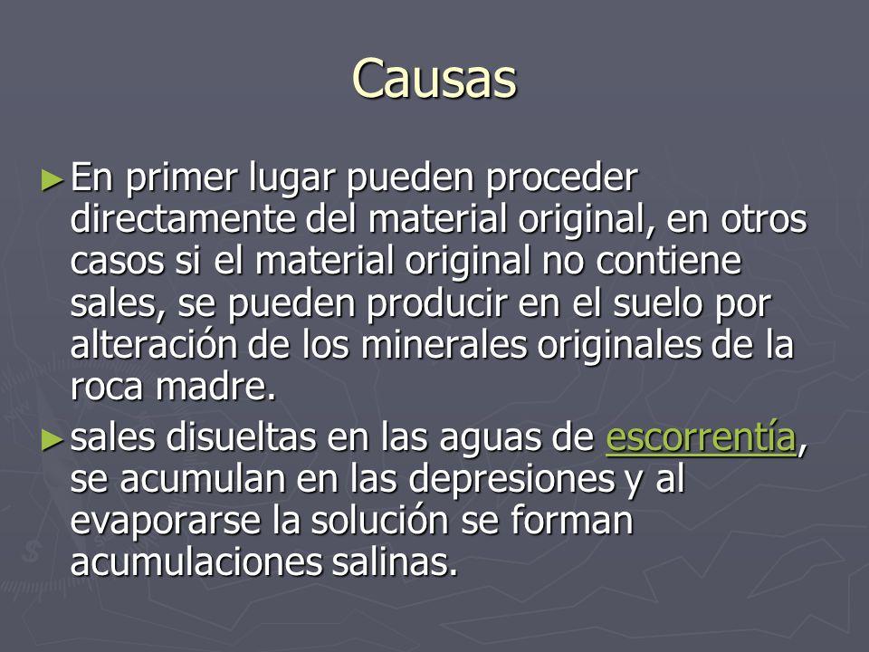 Causas En primer lugar pueden proceder directamente del material original, en otros casos si el material original no contiene sales, se pueden produci