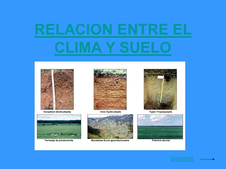 RELACION ENTRE EL CLIMA Y SUELO Siguiente