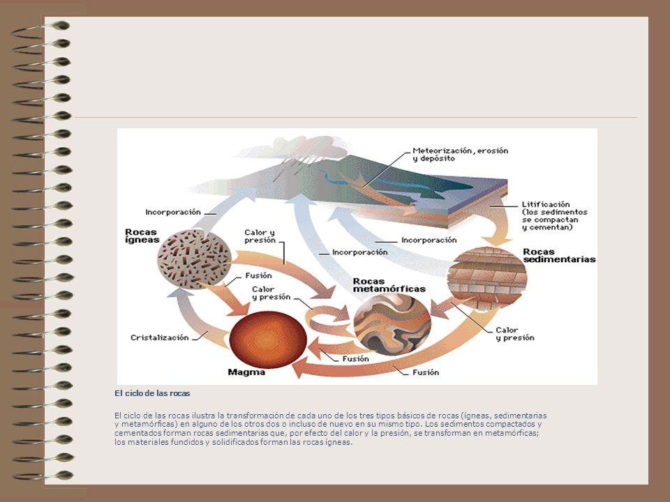 El ciclo de las rocas El ciclo de las rocas ilustra la transformación de cada uno de los tres tipos básicos de rocas (ígneas, sedimentarias y metamórficas) en alguno de los otros dos o incluso de nuevo en su mismo tipo.
