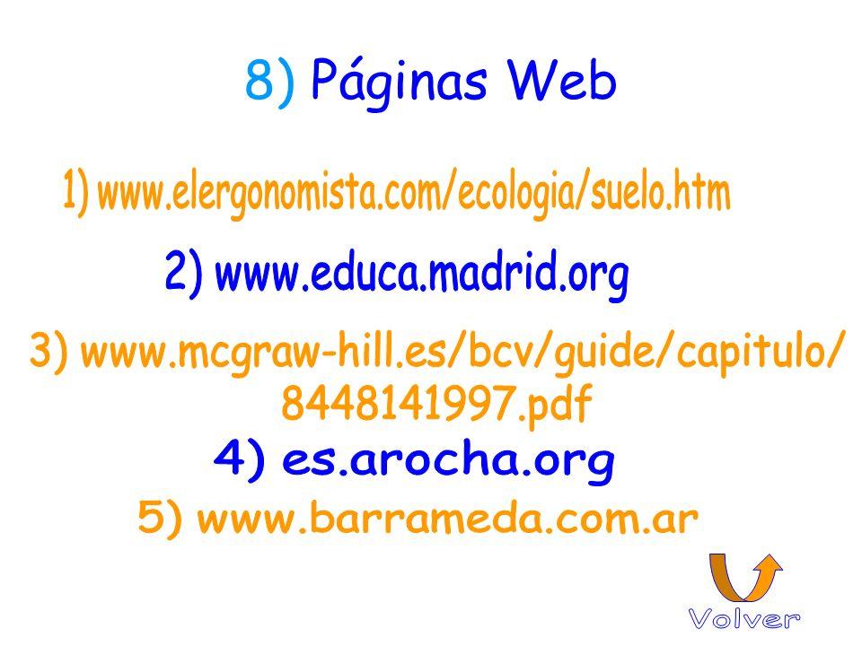 8) Páginas Web