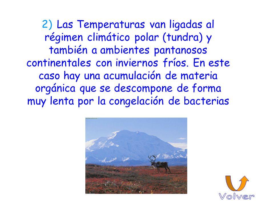 2) Las Temperaturas van ligadas al régimen climático polar (tundra) y también a ambientes pantanosos continentales con inviernos fríos. En este caso h