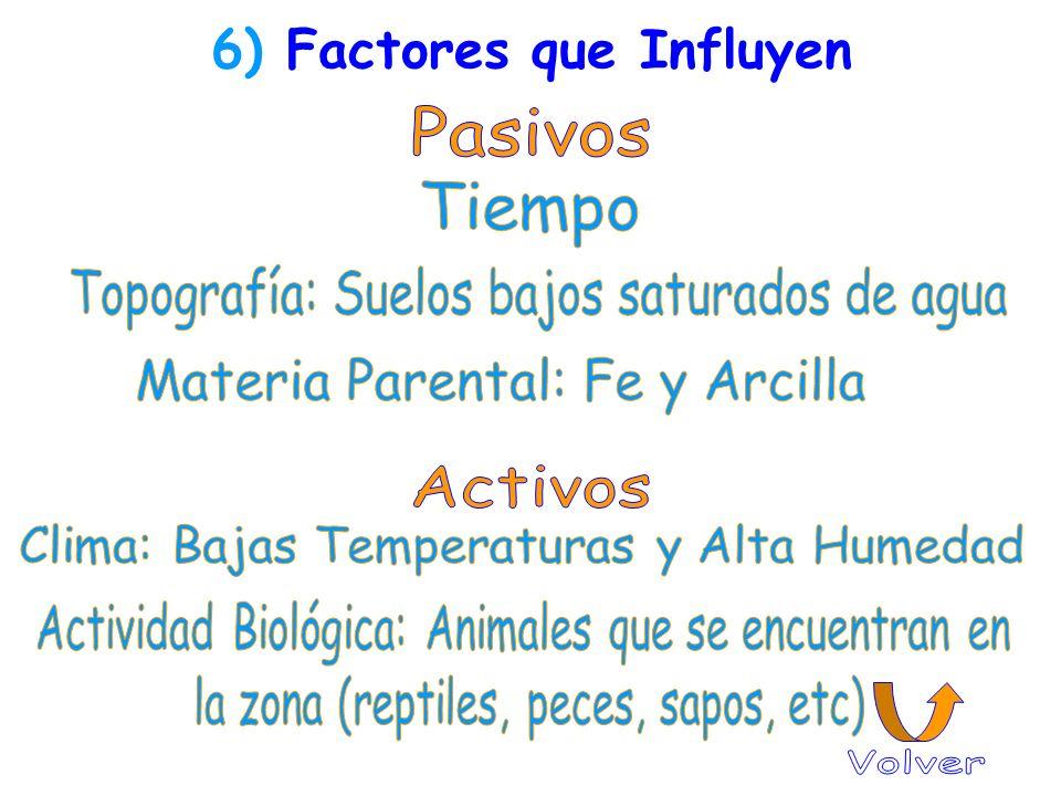 6) Factores que Influyen