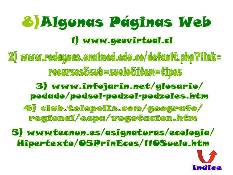 8)Algunas Páginas Web