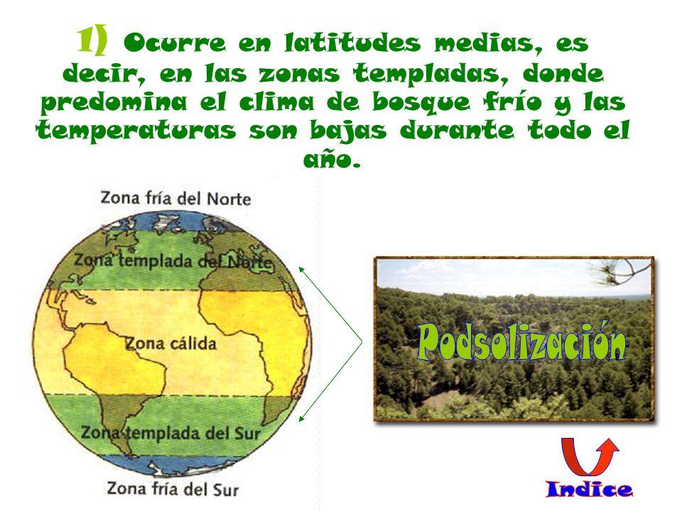 1) Ocurre en latitudes medias, es decir, en las zonas templadas, donde predomina el clima de bosque frío y las temperaturas son bajas durante todo el