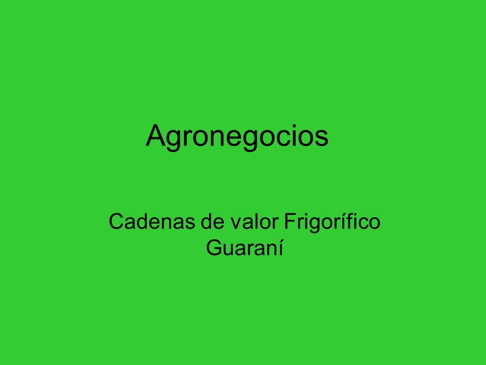 Agronegocios Cadenas de valor Frigorífico Guaraní