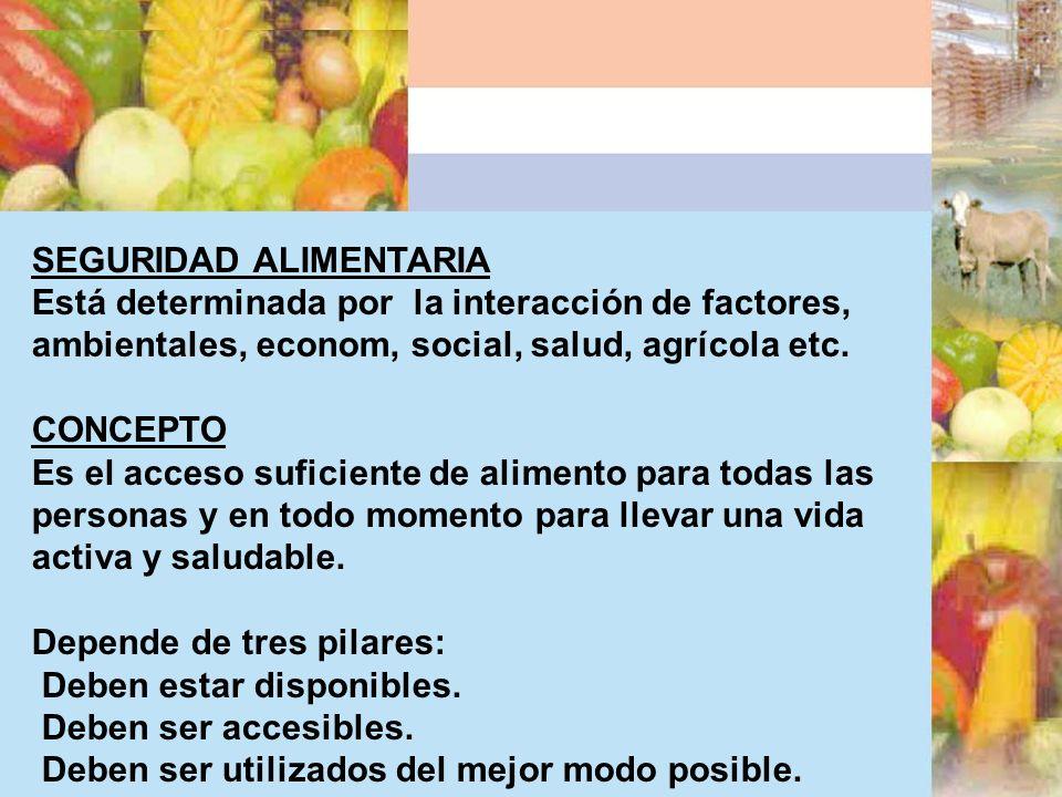 CONCEPTO SEGURIDAD ALIMENTARIA Está determinada por la interacción de factores, ambientales, econom, social, salud, agrícola etc. CONCEPTO Es el acces