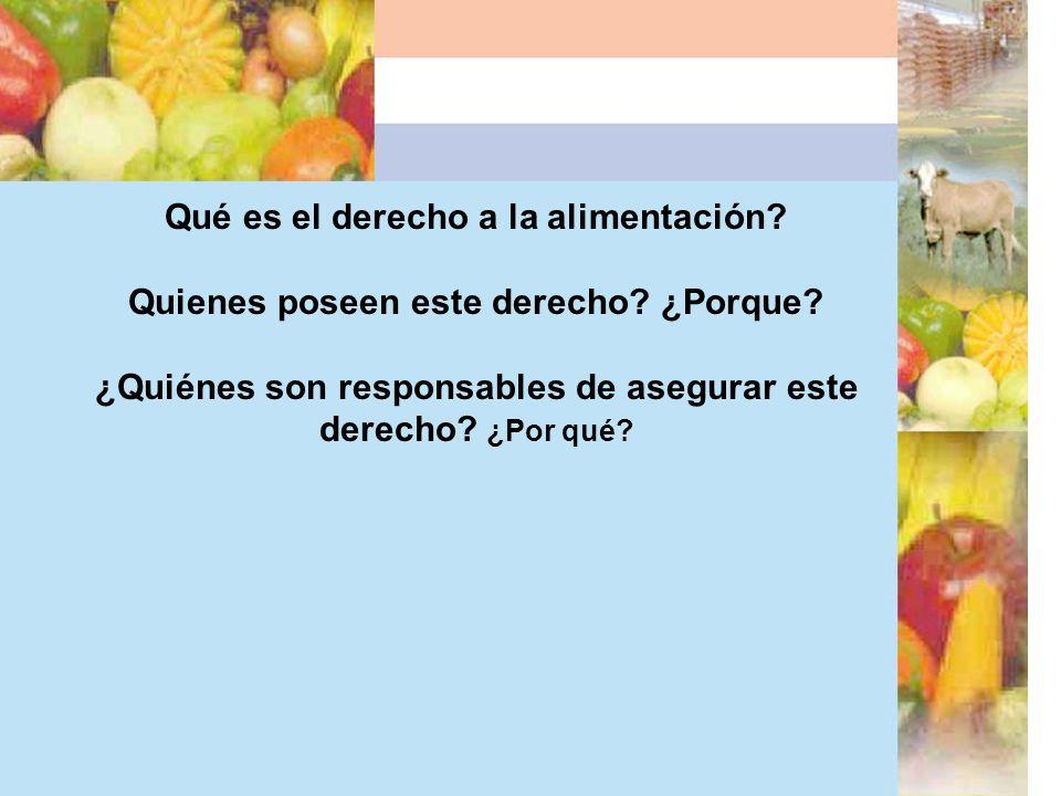 Qué es el derecho a la alimentación? Quienes poseen este derecho? ¿Porque? ¿Quiénes son responsables de asegurar este derecho? ¿Por qué?