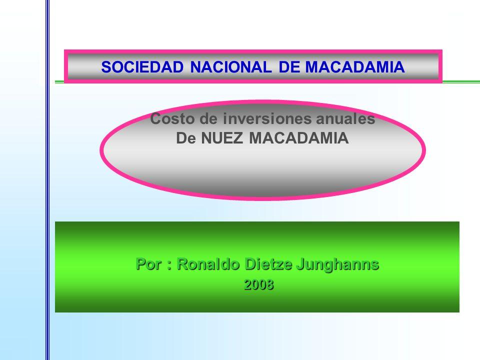 Por : Ronaldo Dietze Junghanns 2008 2008 Costo de inversiones anuales De NUEZ MACADAMIA SOCIEDAD NACIONAL DE MACADAMIA