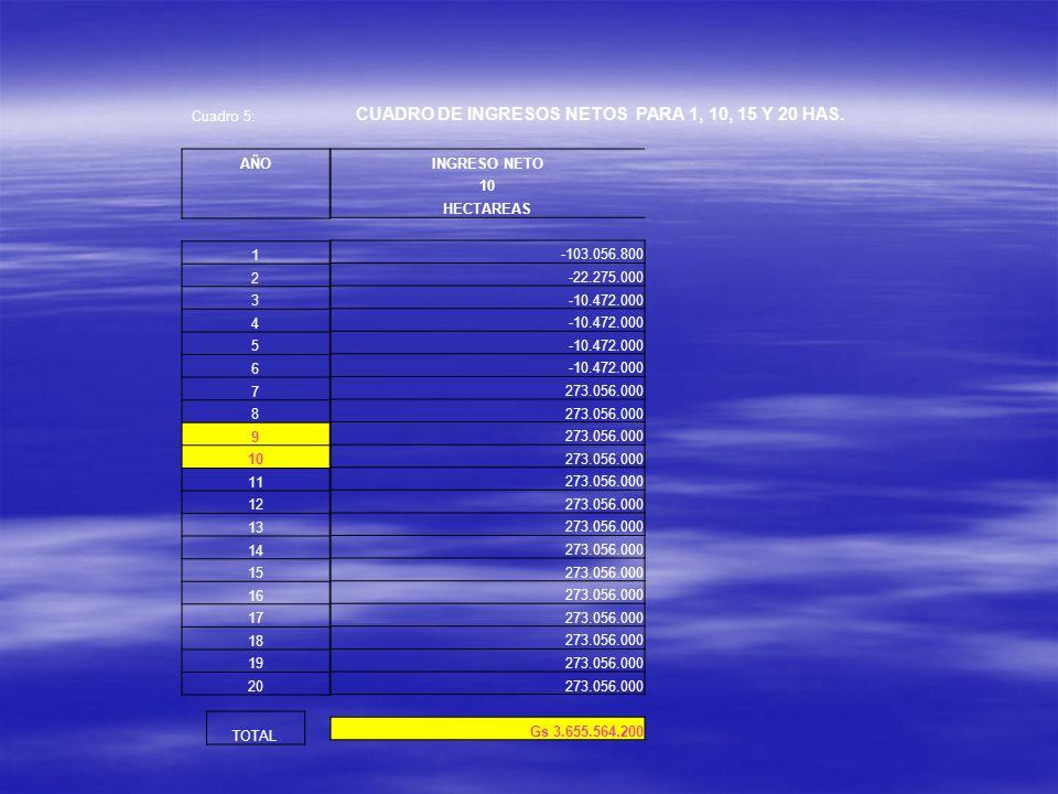 Cuadro 5: CUADRO DE INGRESOS NETOS PARA 1, 10, 15 Y 20 HAS. INGRESO NETO 10 HECTAREAS -103.056.800 -22.275.000 -10.472.000 273.056.000 Gs 3.655.564.20