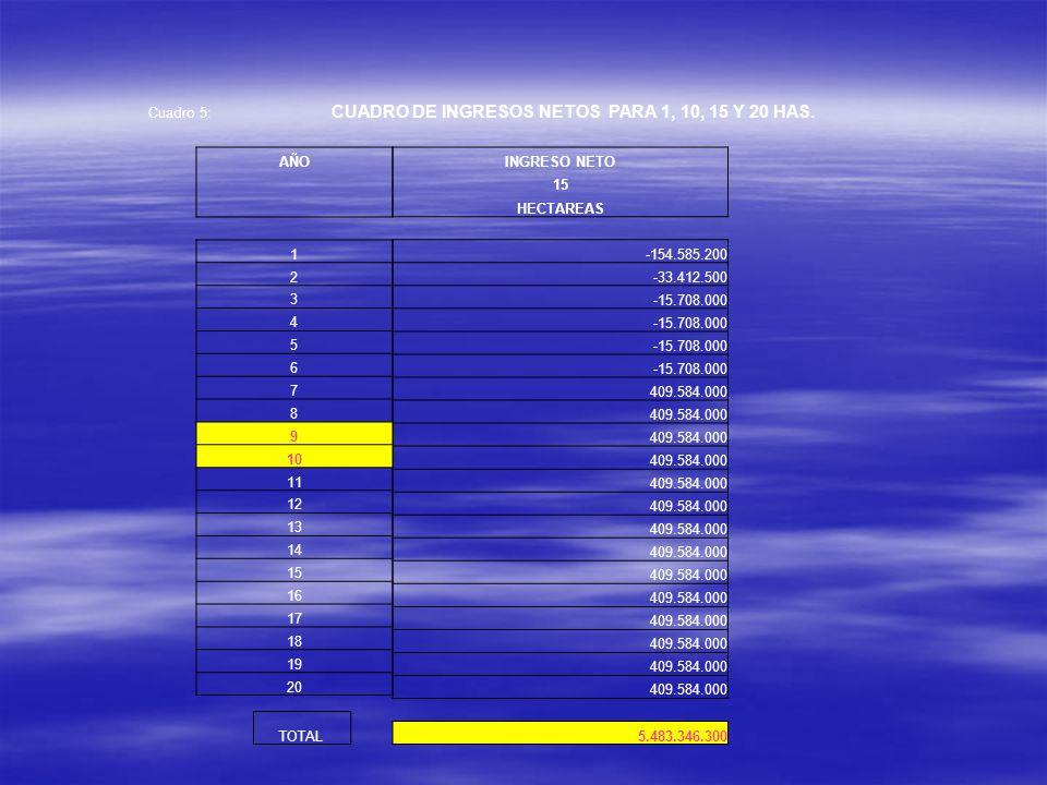 Cuadro 5: CUADRO DE INGRESOS NETOS PARA 1, 10, 15 Y 20 HAS. INGRESO NETO 15 HECTAREAS -154.585.200 -33.412.500 -15.708.000 409.584.000 5.483.346.300 A