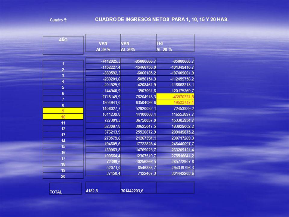 VAN TRI Al 39 %AL 20% -7412025,3-85880666,7 -1152227,4-15468750,0-101349416,7 -389592,3-6060185,2-107409601,9 -280201,6-5050154,3-112459756,2 -201525,