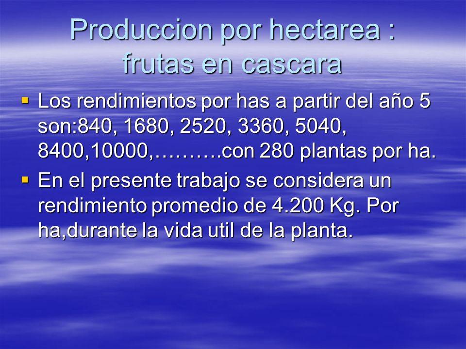 Produccion por hectarea : frutas en cascara Los rendimientos por has a partir del año 5 son:840, 1680, 2520, 3360, 5040, 8400,10000,……….con 280 planta