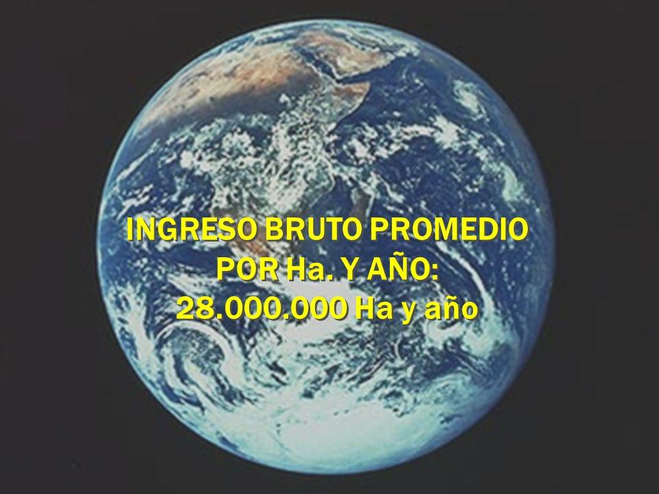 INGRESO BRUTO PROMEDIO POR Ha. Y AÑO: 28.000.000 Ha y año INGRESO BRUTO PROMEDIO POR Ha. Y AÑO: 28.000.000 Ha y año