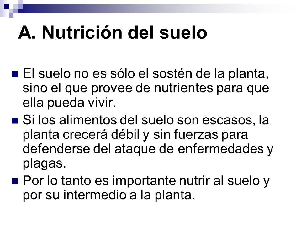 A. Nutrición del suelo El suelo no es sólo el sostén de la planta, sino el que provee de nutrientes para que ella pueda vivir. Si los alimentos del su
