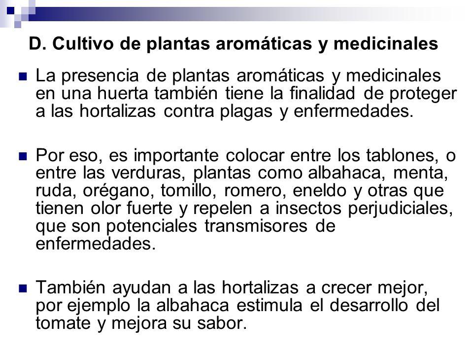 D. Cultivo de plantas aromáticas y medicinales La presencia de plantas aromáticas y medicinales en una huerta también tiene la finalidad de proteger a