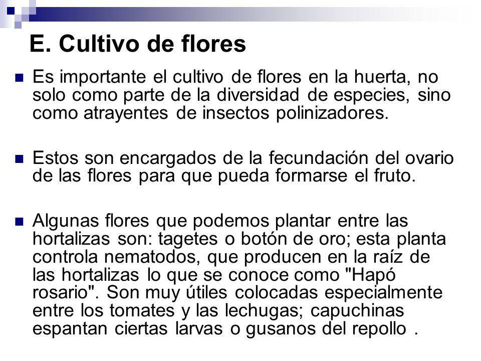 E. Cultivo de flores Es importante el cultivo de flores en la huerta, no solo como parte de la diversidad de especies, sino como atrayentes de insecto