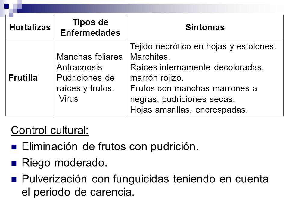 Control cultural: Eliminación de frutos con pudrición. Riego moderado. Pulverización con funguicidas teniendo en cuenta el periodo de carencia. Hortal