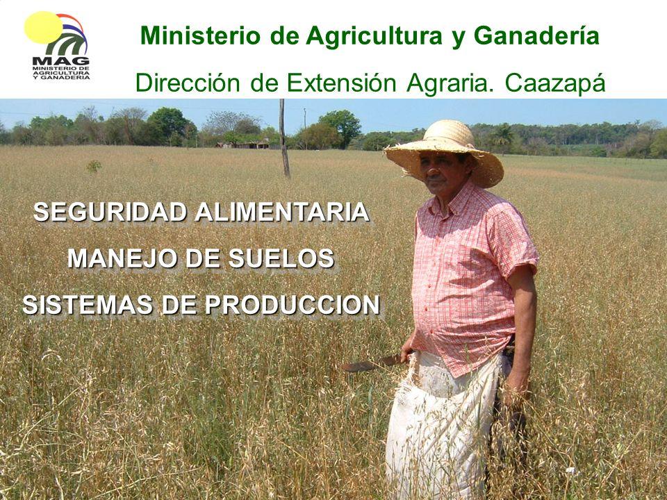 SEGURIDAD ALIMENTARIA MANEJO DE SUELOS SISTEMAS DE PRODUCCION SEGURIDAD ALIMENTARIA MANEJO DE SUELOS SISTEMAS DE PRODUCCION Ministerio de Agricultura