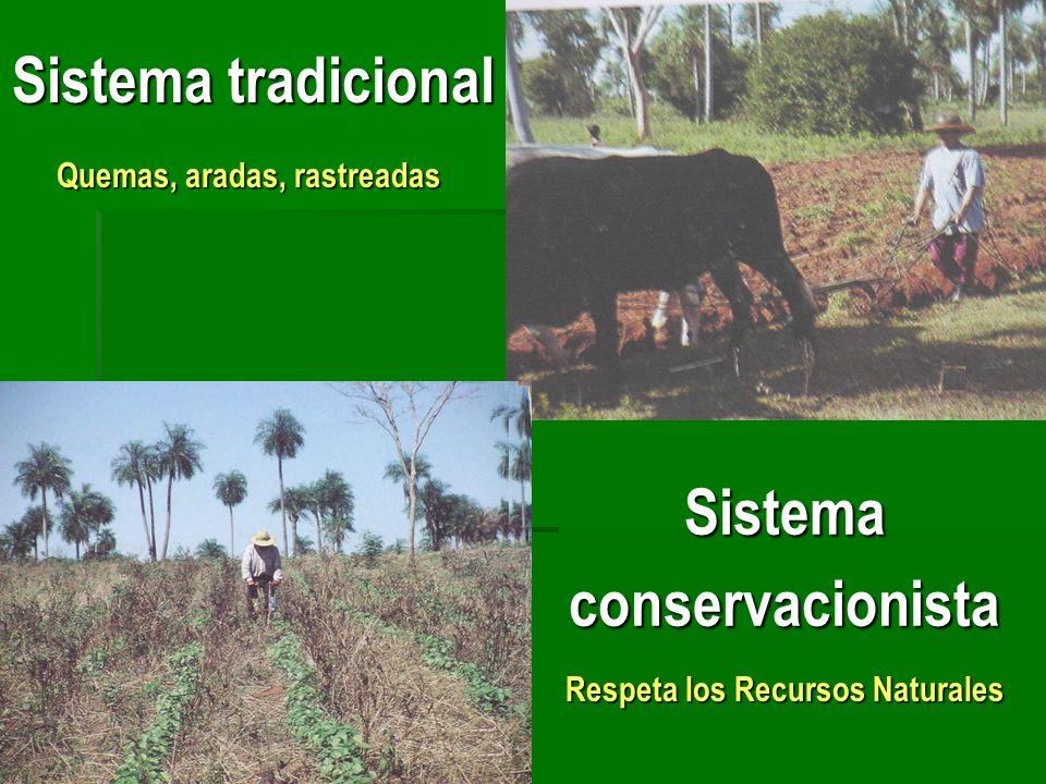 Sistema tradicional Sistemaconservacionista Quemas, aradas, rastreadas Respeta los Recursos Naturales