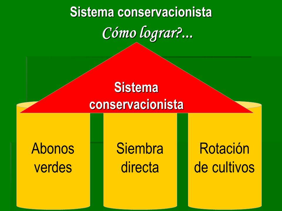 Cómo lograr?... Sistema conservacionista Abonos verdes Siembra directa Rotación de cultivos Sistema conservacionista