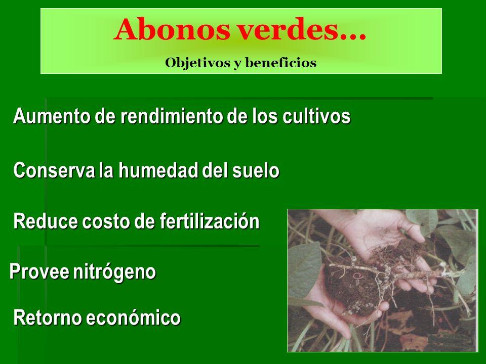 Aumento de rendimiento de los cultivos Conserva la humedad del suelo Provee nitrógeno Reduce costo de fertilización Retorno económico Abonos verdes...