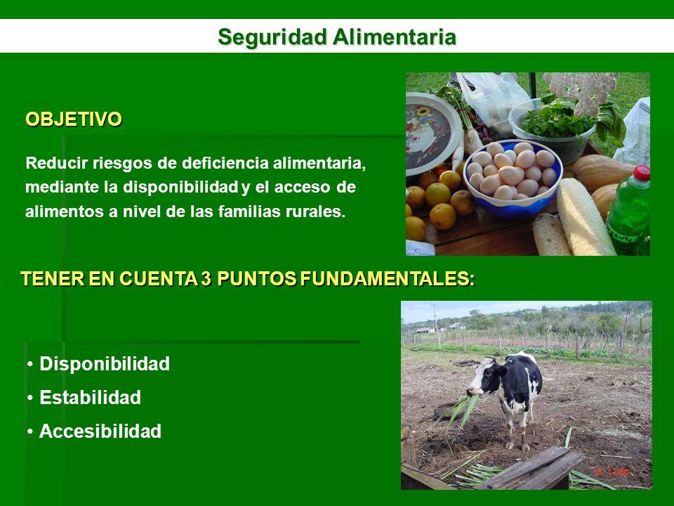 Seguridad Alimentaria OBJETIVO Reducir riesgos de deficiencia alimentaria, mediante la disponibilidad y el acceso de alimentos a nivel de las familias