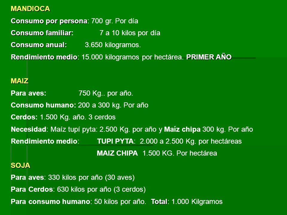 MANDIOCA Consumo por persona Consumo por persona: 700 gr. Por día Consumo familiar Consumo familiar: 7 a 10 kilos por día Consumo anual: Consumo anual