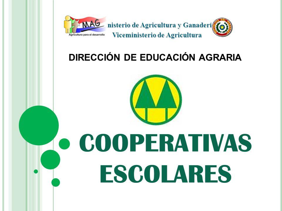 COOPERATIVA ESCOLAR Es una asociación integrada por los miembros de una Comunidad Educativa, que actúan por sí mismos, con la orientación y guía de los docentes y directivos de cada Institución Educativa.