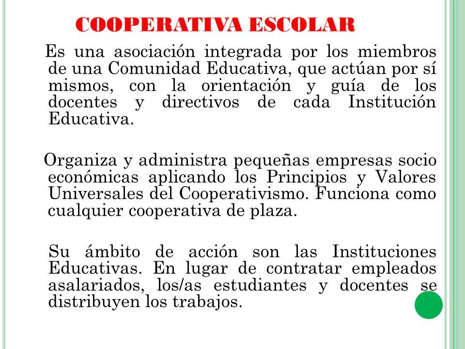 Organismos de Apoyo de la Asamblea Como se organizan y se administran Consejo de Administración Integrado por alumnos, profesores y otros miembros de la Comunidad Educativa electos en asamblea.