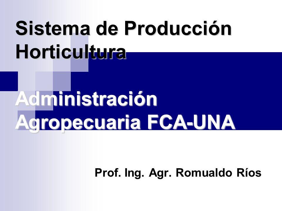 Sistema de Producción Horticultura Administración Agropecuaria FCA-UNA Prof.