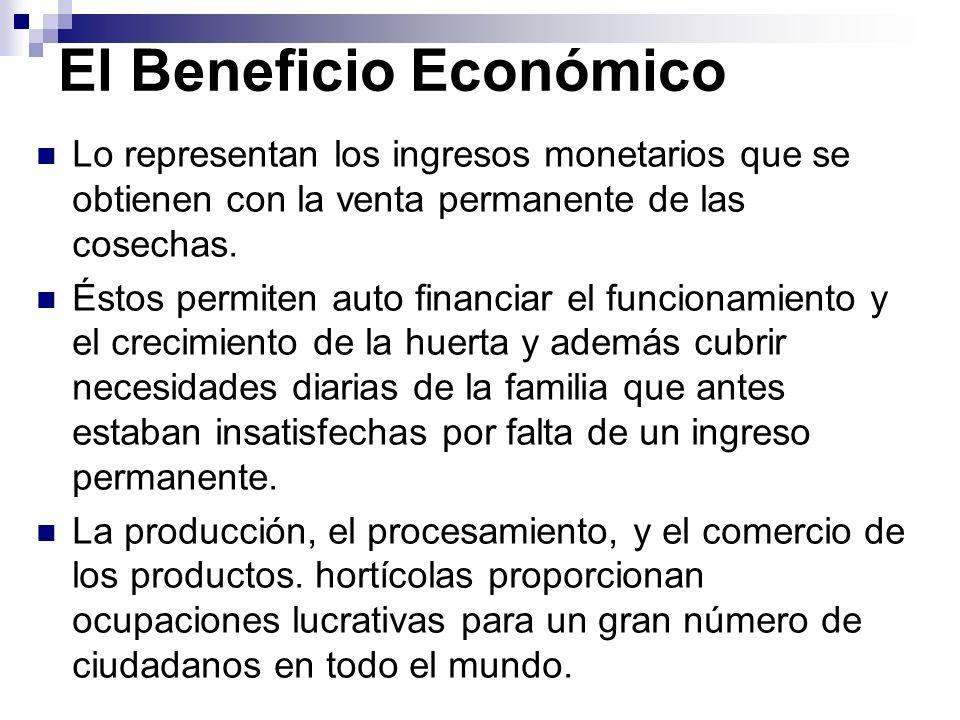 El Beneficio Económico Lo representan los ingresos monetarios que se obtienen con la venta permanente de las cosechas.