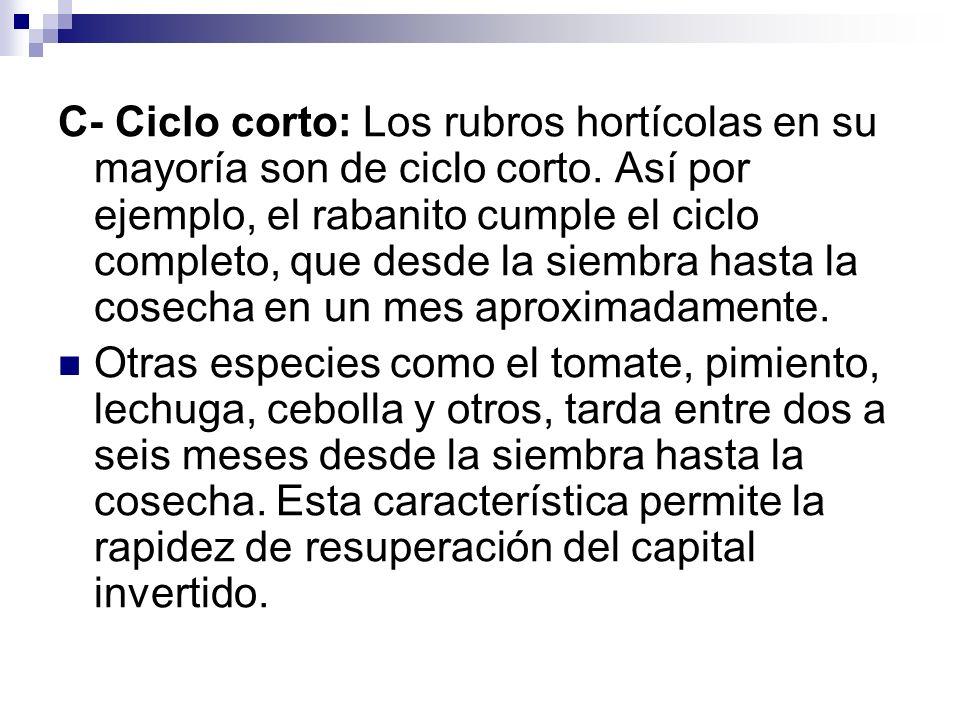 C- Ciclo corto: Los rubros hortícolas en su mayoría son de ciclo corto.