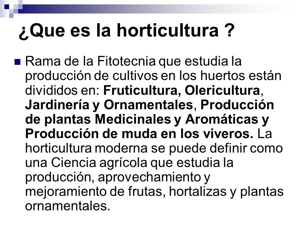 Ubicación De la Horticultura Dentro De La Ciencias Agrarias Fitotecnia: Conjunto de tecnologías de cultivo comunes a la generalidad de las plantas cultivadas orientadas a garantizar calidades en la producción agrícola.