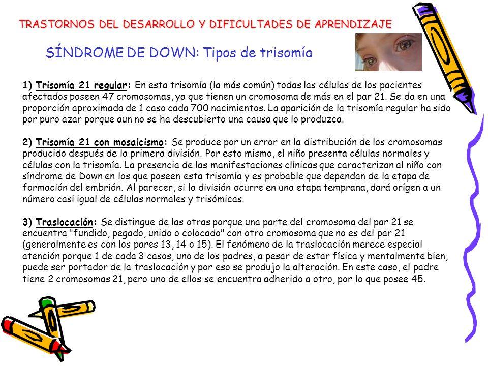 SÍNDROME DE DOWN: Tipos de trisomía TRASTORNOS DEL DESARROLLO Y DIFICULTADES DE APRENDIZAJE 1) Trisomía 21 regular: En esta trisomía (la más común) to