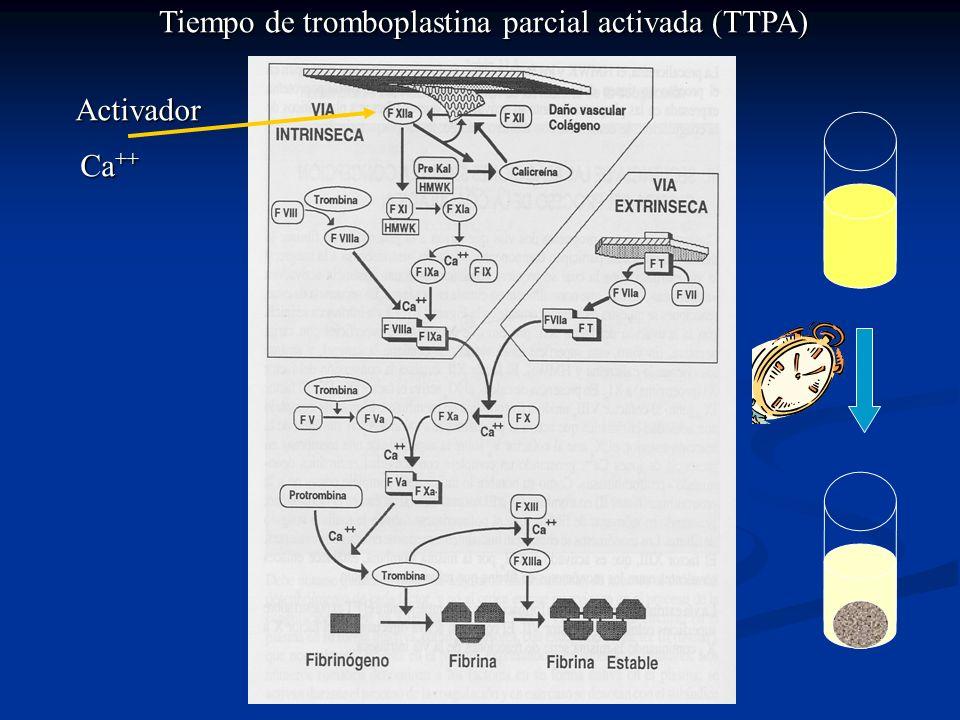 Tiempo de tromboplastina parcial activada (TTPA) Activador Ca ++