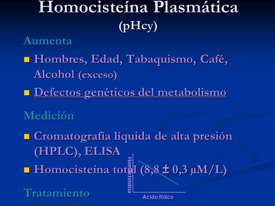 Homocisteína Plasmática (pHcy) Aumenta Hombres, Edad, Tabaquismo, Café, Alcohol (exceso) Hombres, Edad, Tabaquismo, Café, Alcohol (exceso) Defectos ge